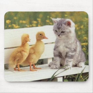 kitten with ducks mouse pad