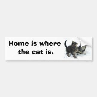 kittenjanuary, Home is where the cat is. Bumper Sticker
