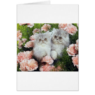 Kittens And Carnations Card