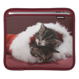 Kittens asleep together in Christmas hat Sleeve For iPads