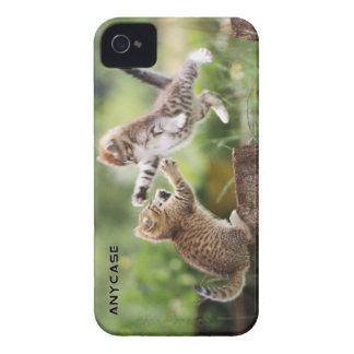 Kittens Custom Case for iPhone 4 or 4S