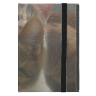 Kittens Growing Fast Case For iPad Mini