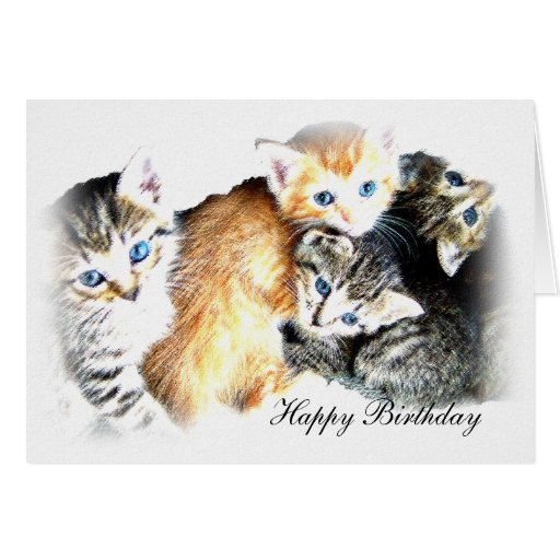 Kittens, Happy Birthday Greeting Card