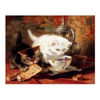 Kittens high tea party postcard