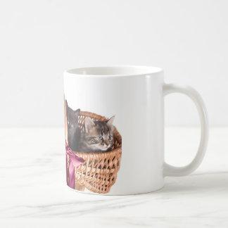 kittens in a wicker basket mug