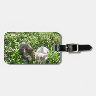 Kittens in Grass Luggage Tag