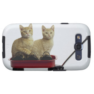 Kittens in wagon galaxy SIII case