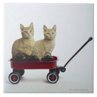 Kittens in wagon large square tile