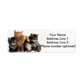 kittens return address label