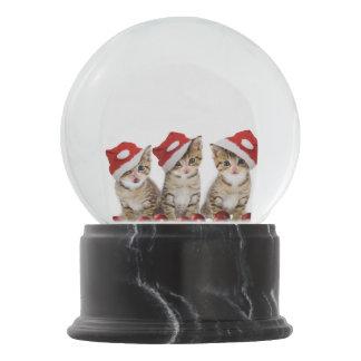 Kittens Wearing Santa Hat Snow Globe Snow Globes