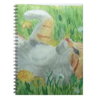 kittie_siesta notebooks