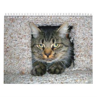 Kitties Calendars
