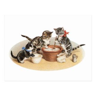 Kitties in the kitchen postcard