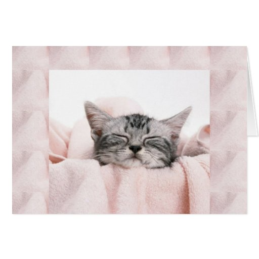 Kitty and blanket greeting card