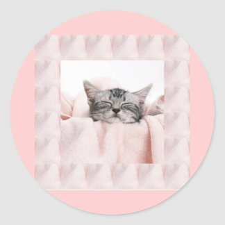 Kitty and blanket round sticker