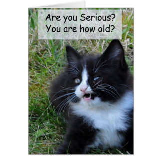 Kitty Birthday Card - Funny!!!