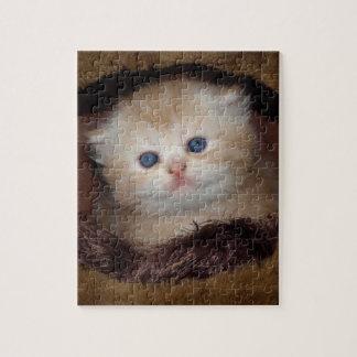 Kitty blue eyes jigsaw puzzle