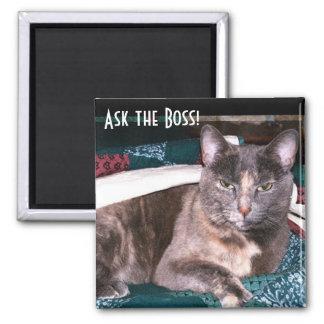 Kitty Boss Magnet