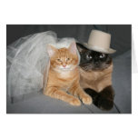 Kitty bride and groom greeting card