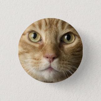 Kitty Button