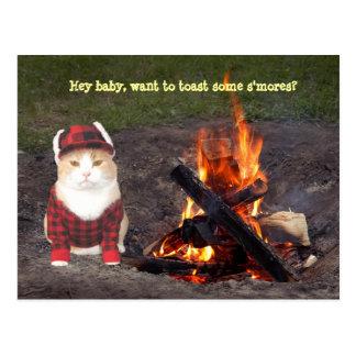 Kitty Campfire Postcard