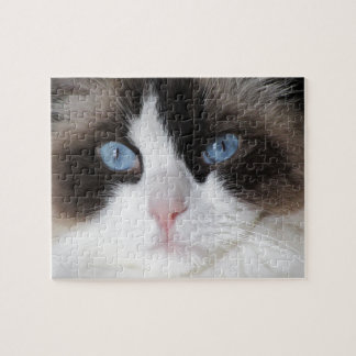Kitty Cat Blue Eyed Darling Jigsaw Puzzle