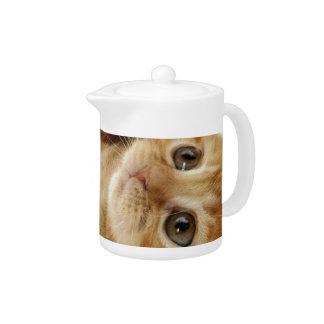 Kitty Cat Cute Item