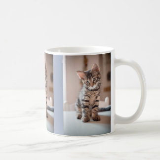 Kitty Cat Lover 3 Custom Photos Coffee Mug
