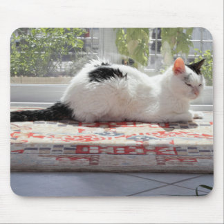 Kitty Cat Relaxing in a Sunny Window Mouse Pad