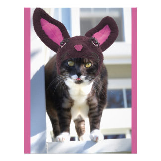 Kitty Cat Wearing Bunny Ears 21.5 Cm X 28 Cm Flyer