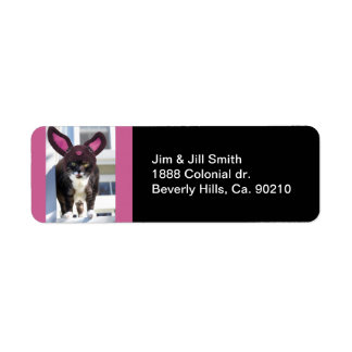 Kitty Cat Wearing Bunny Ears Return Address Label
