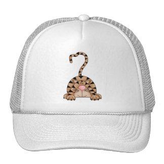 Kitty Cats · Tabby Cat Hats