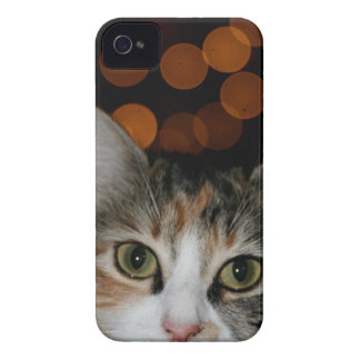 Kitty Dreams iPhone 4 Case