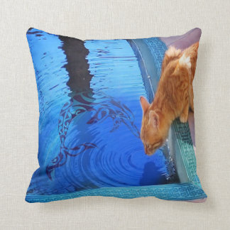 Kitty Drinking from Pool with Dolphin on Cushion