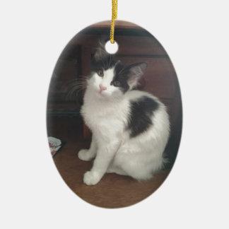 Kitty Fun! Ceramic Oval Decoration