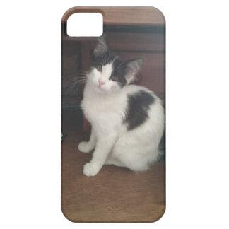 Kitty Fun! iPhone 5 Cases
