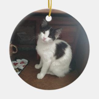 Kitty Fun! Round Ceramic Decoration