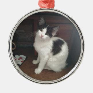 Kitty Fun! Silver-Colored Round Decoration