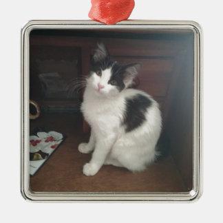 Kitty Fun! Silver-Colored Square Decoration