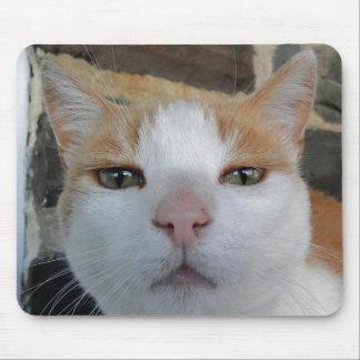 Kitty Head Shot Mousepad