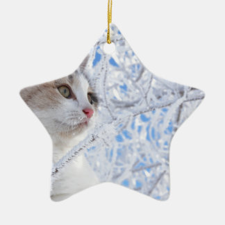 Kitty Ice Queen Ceramic Star Decoration