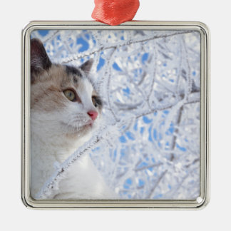 Kitty Ice Queen Silver-Colored Square Decoration