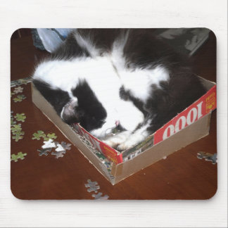 Kitty in a Box Mousepads