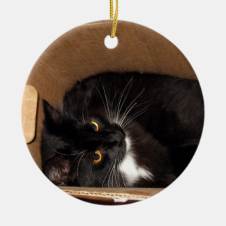 Kitty in a Box - Photograph Ceramic Ornament