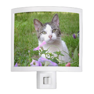 Kitty in the Flowers Night Light