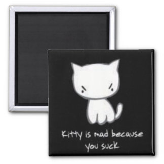 kitty is mad magnet