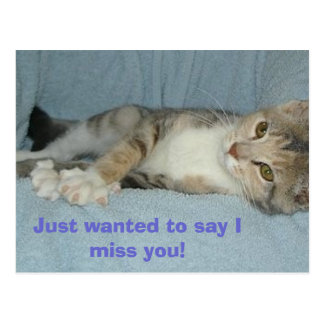 kitty, Just wanted to say I miss you! Postcard