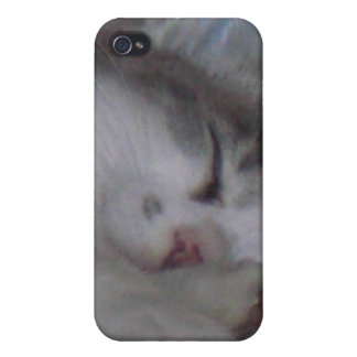 Kitty Kat Phone Kover Cases For iPhone 4