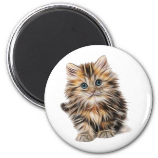 Kitty Magnet