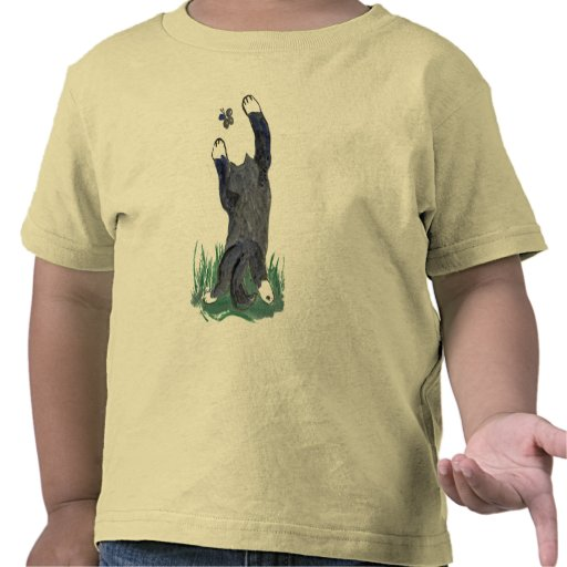 Kitty Makes a Stretching Leap toward Flutter-by Shirt